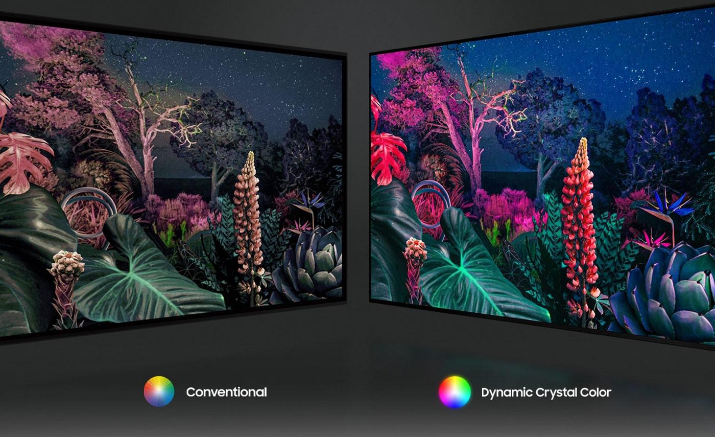 با فناوری Dynamic Crystal Color تمام ظرافتهای تصویر را خواهید دید
